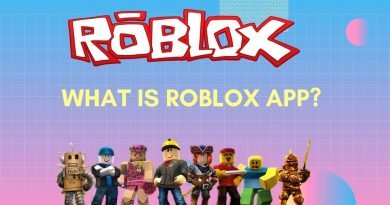 What is ROBLOX APP